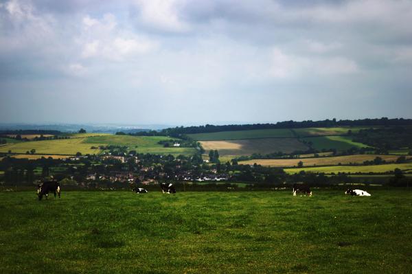 Cotswolds Landscape 3