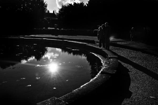lincolnshire england belton-house pond garden