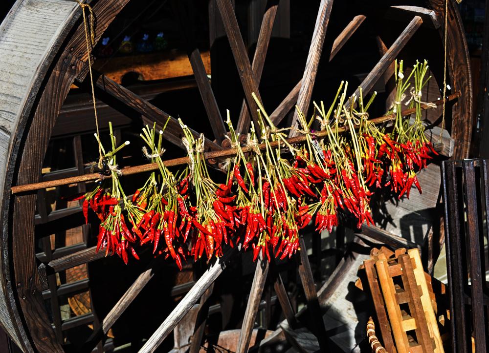 japan kyoto amanohashidate chili
