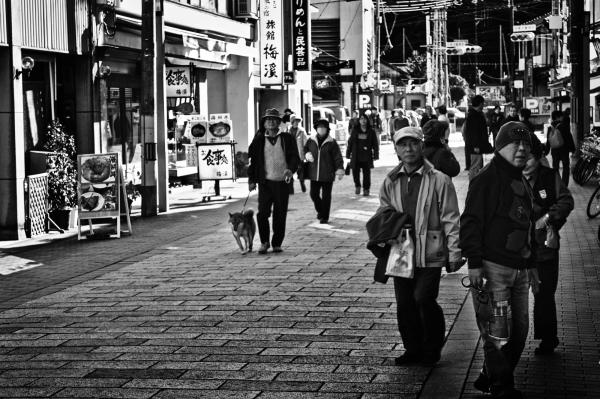 Downtown Amanohashidate