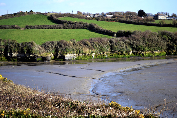 Padstow, Cornwall 26