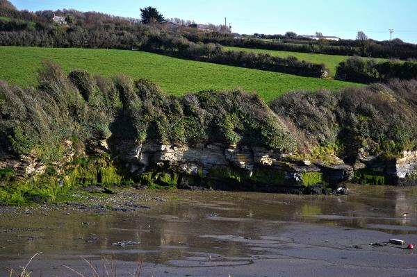 padstow cornwall england camel-estuary estuary