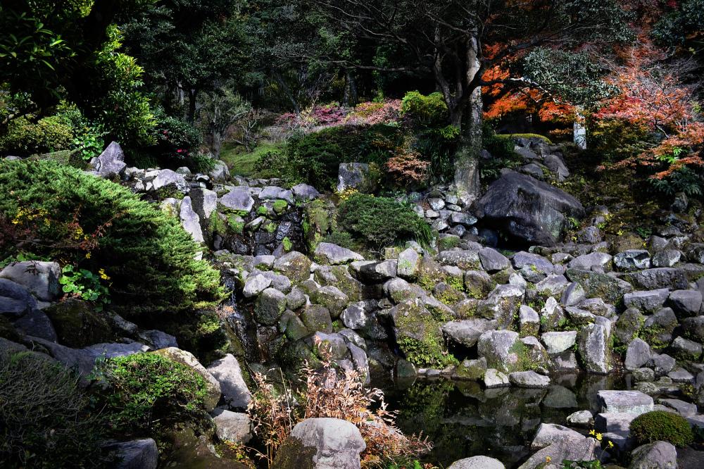 kagoshima kyushu japan sengan-en garden tree pond