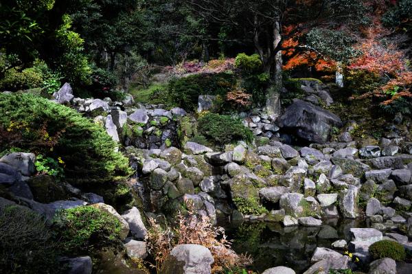 Scenes From Sengan en, Kagoshima 4
