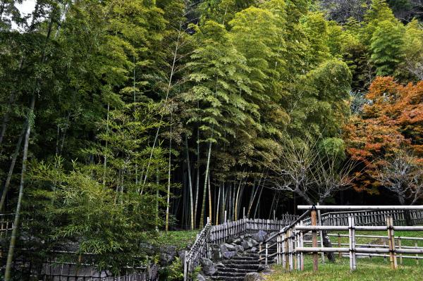 Scenes From Sengan en, Kagoshima 6