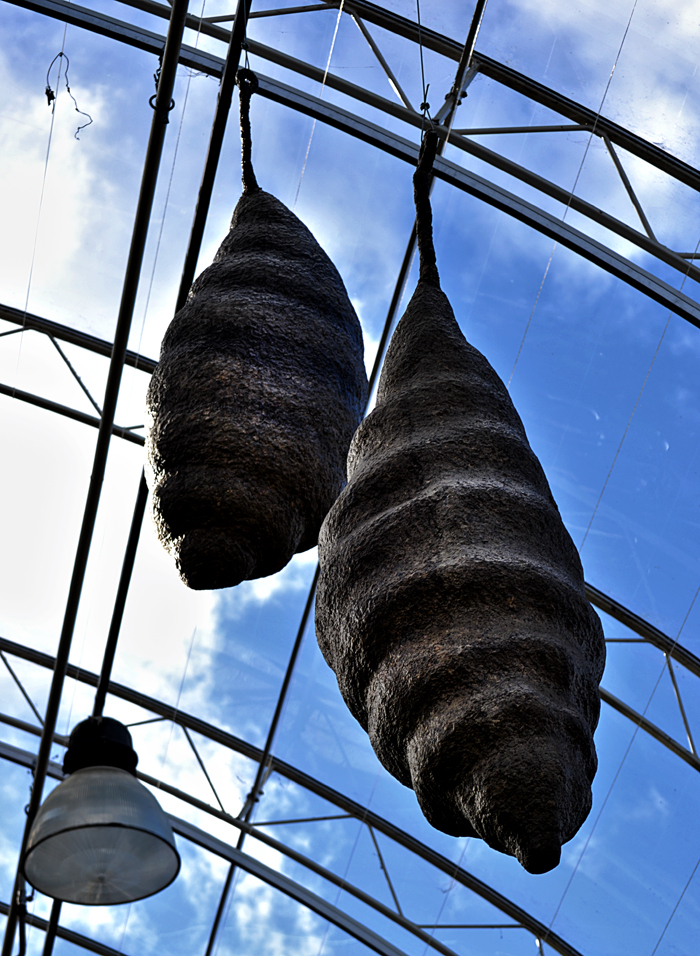 butterfly chrysalis wisley england sculpture