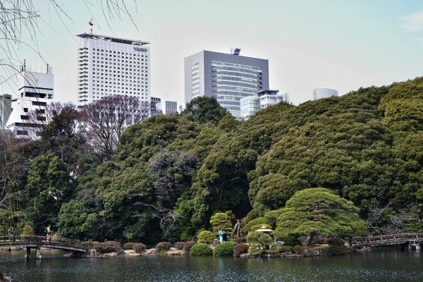 park tokyo shinjuku shinjuku-park japan tree pond