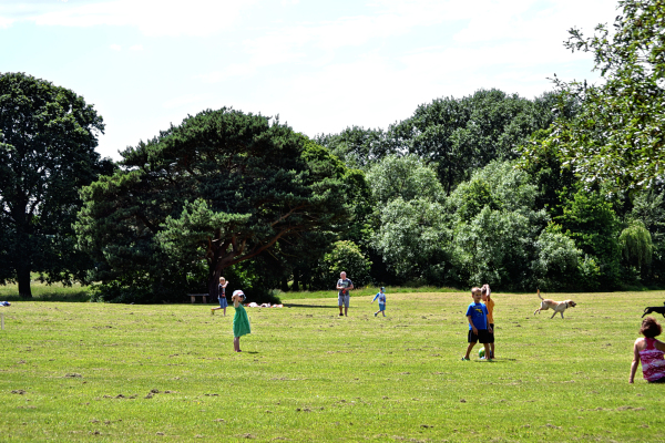 Nonsuch Park, June 2014 2
