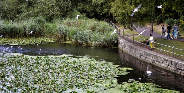 abbey-park park leicester river england