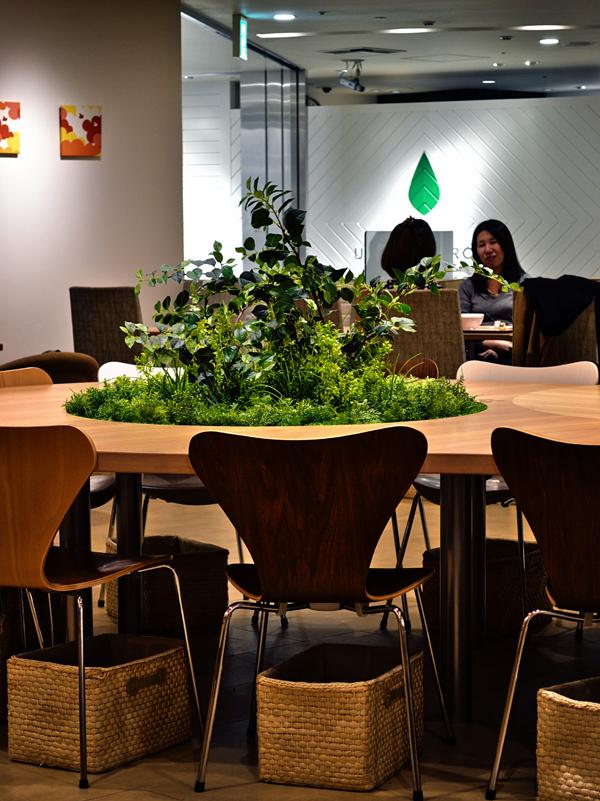 cafe umeda osaka japan plant