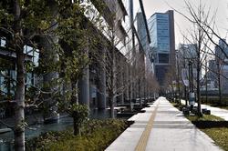 osaka umeda japan grand-front-osaka tree