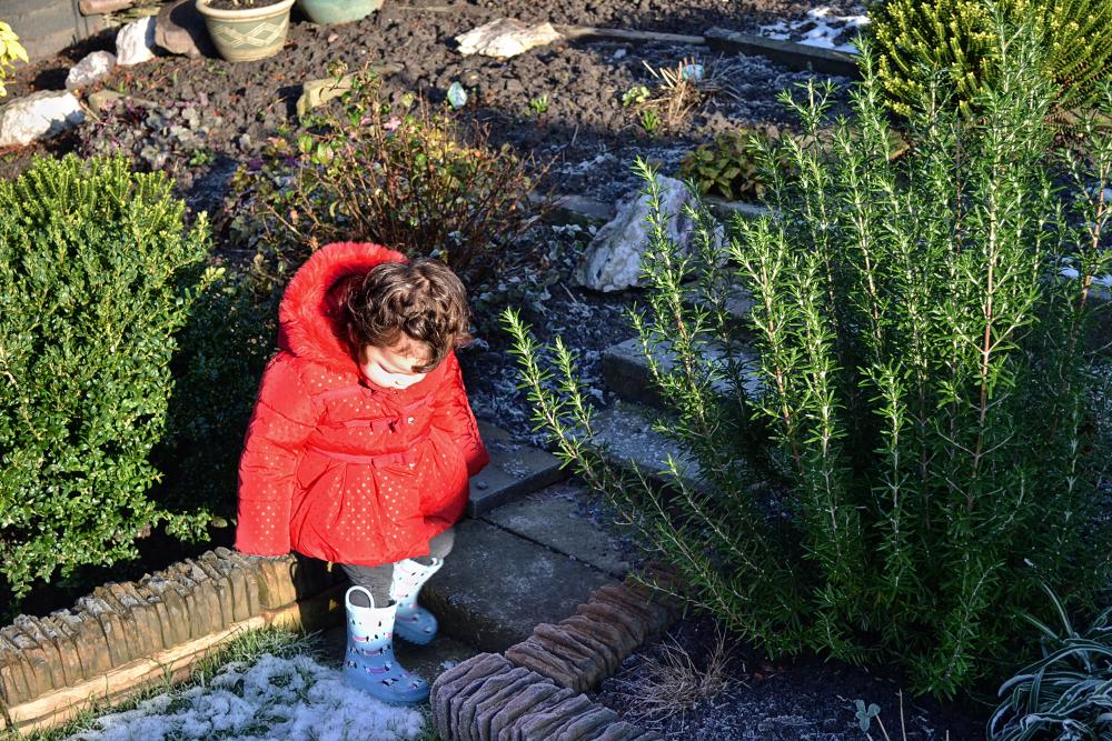 leicester england frost mia garden