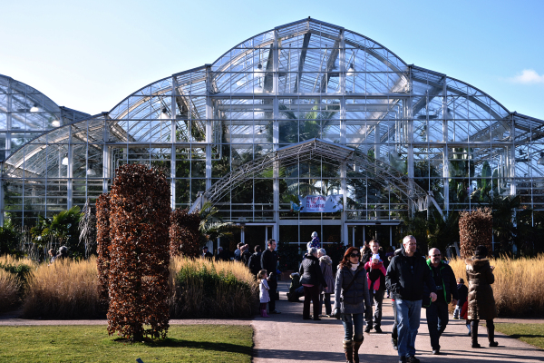 Morning at the Glasshouse, Wisley