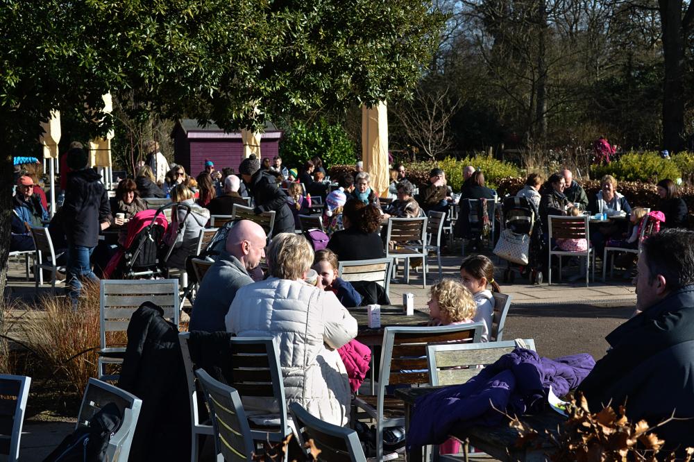 wisley garden england cafe family