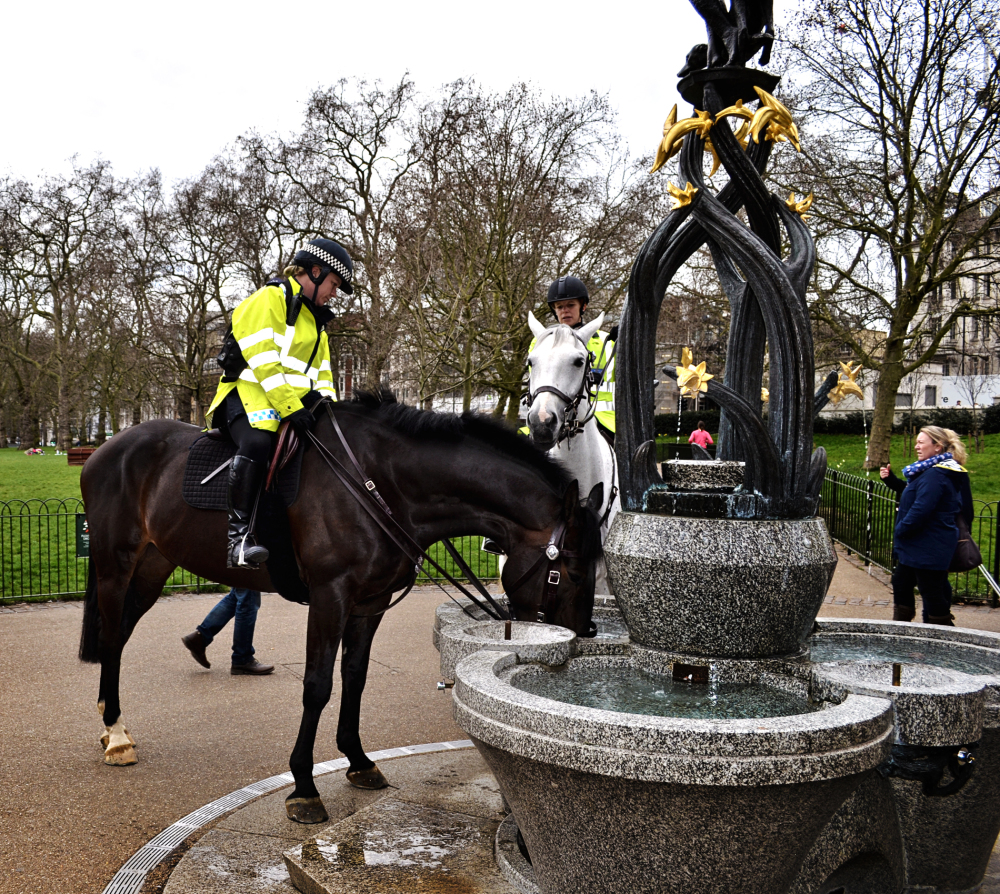 london england green-park park police horse