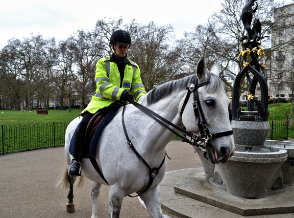 On Patrol, Green Park 2