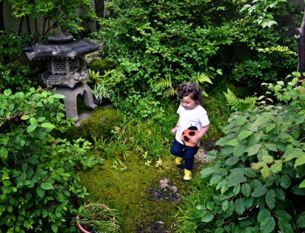 Front Garden, Okayama 2