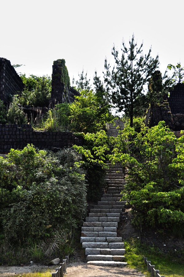 japan kagawa inujima seirensho brick tree