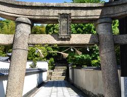 japan kagawa naoshima torii