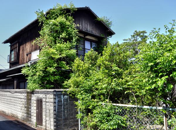 japan kagawa naoshima house vine