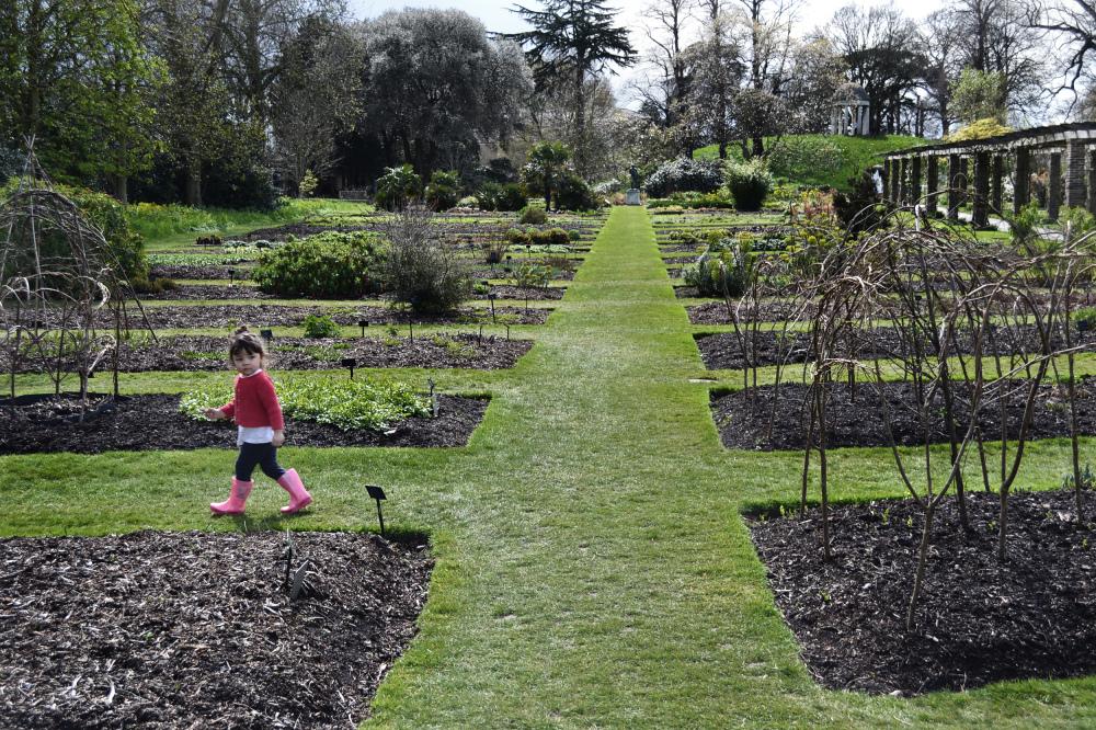 kew-gardens london england Mia tree garden