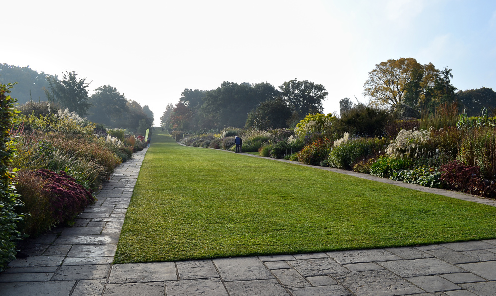 wisley garden england flower grass