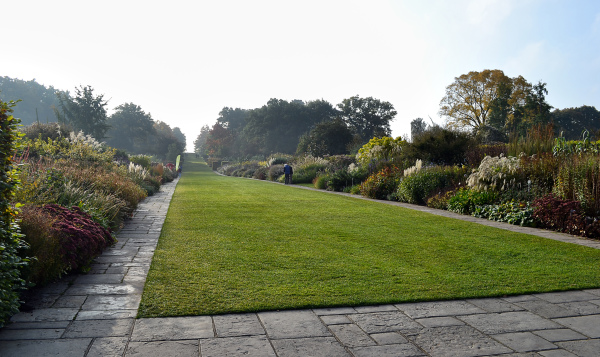 Early Morning, Wisley