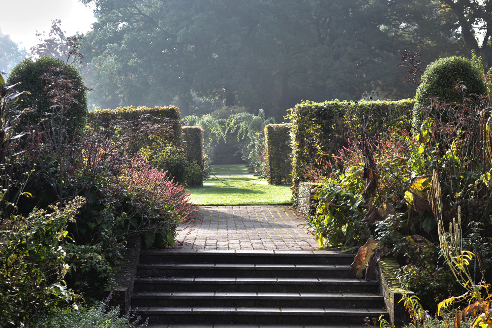 wisley garden england steps hedge