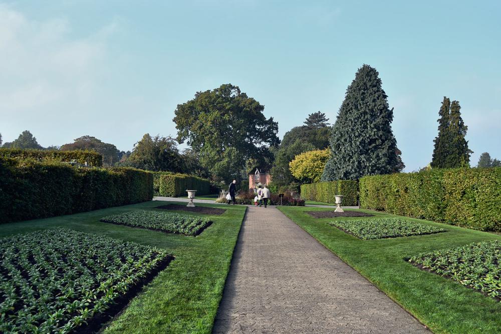 wisley garden england tree flower grass