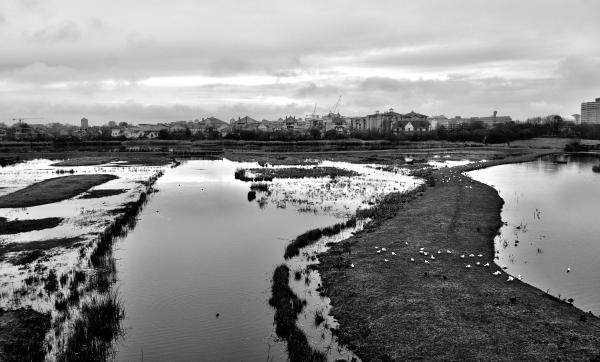 london england wetlands