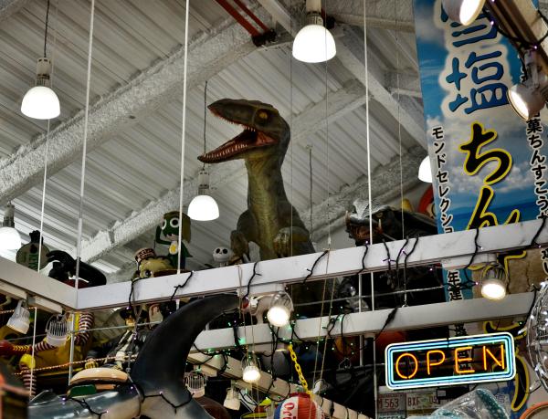 okinawa japan naha shop dinosaur