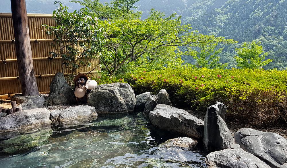 tokushima shikoku japan onsen bath mountain tanuki