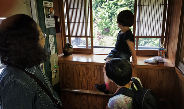 Onsen, Kazurabashi Hotel 6