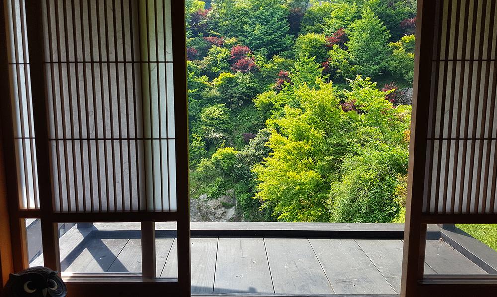tokushima shikoku japan onsen tree shoji