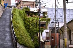 matsuyama japan shikoku street