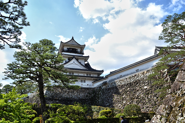 Return to Kochi Castle 6