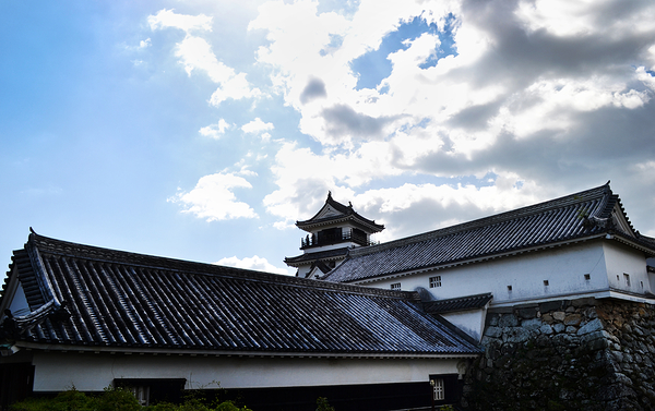 Return to Kochi Castle 7