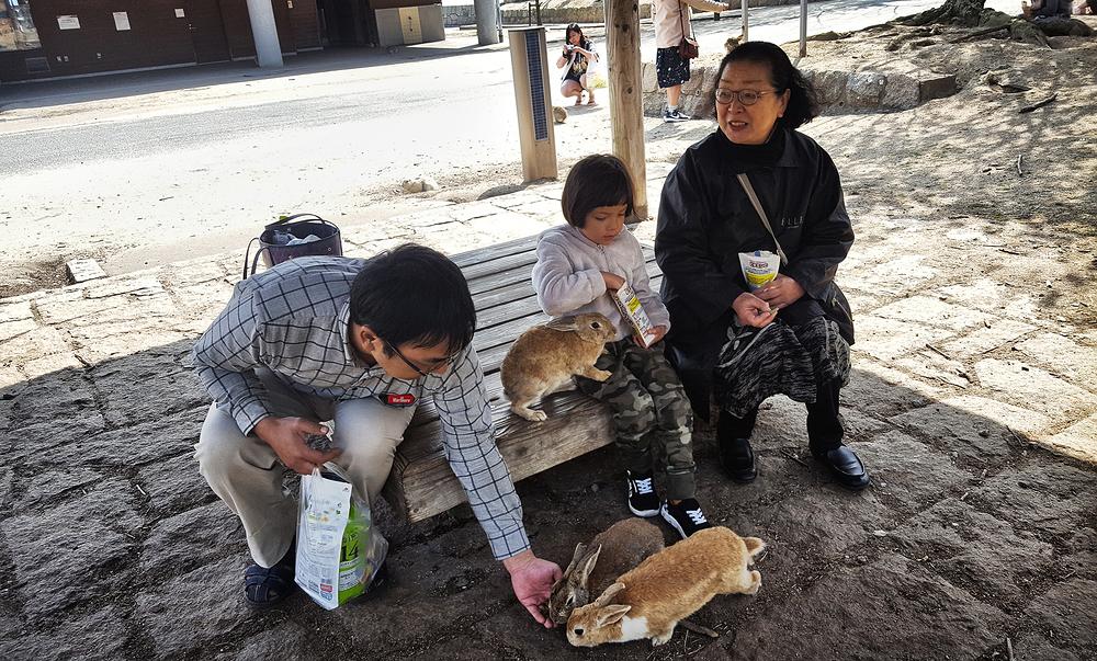 hiroshima japan rabbit mia kobayashi okunoshima