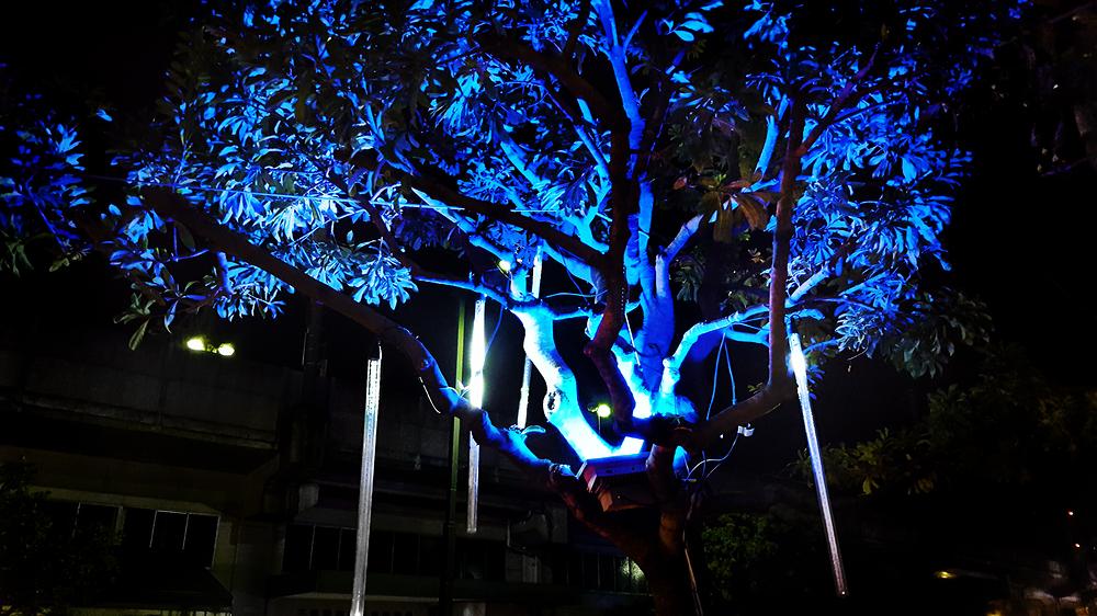mihara hiroshima japan light tree