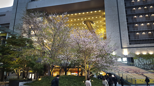 Springtime, Osaka Station