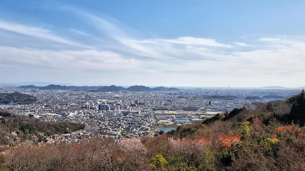 himeji japan city sakura blossom