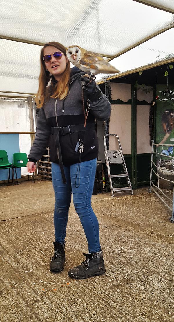 hounslow-urban-farm london england owl