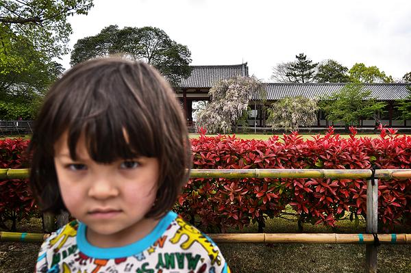 todaiji temple nara japan mia
