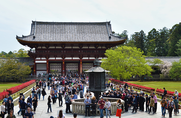 todaiji temple nara japan tourist