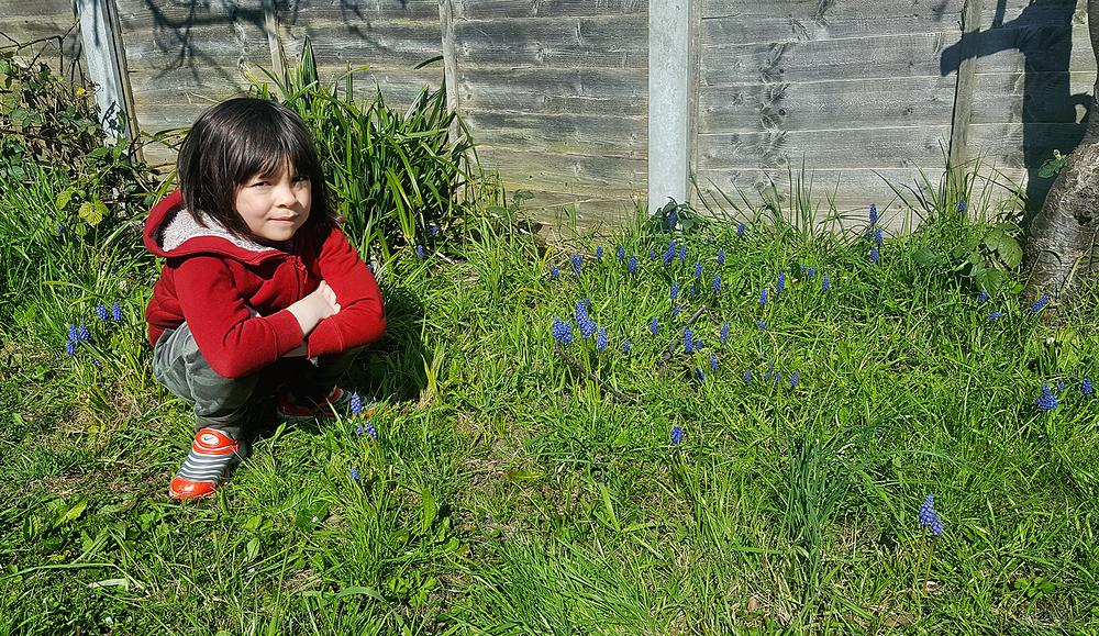 mia flower england lockdown worcester-park garden