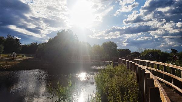 england lockdown worcester-park park hamptons pond