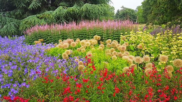 england lockdown kew-gardens london flower