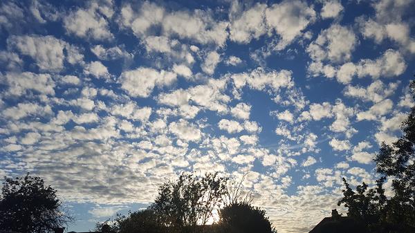 worcester-park england garden cloud