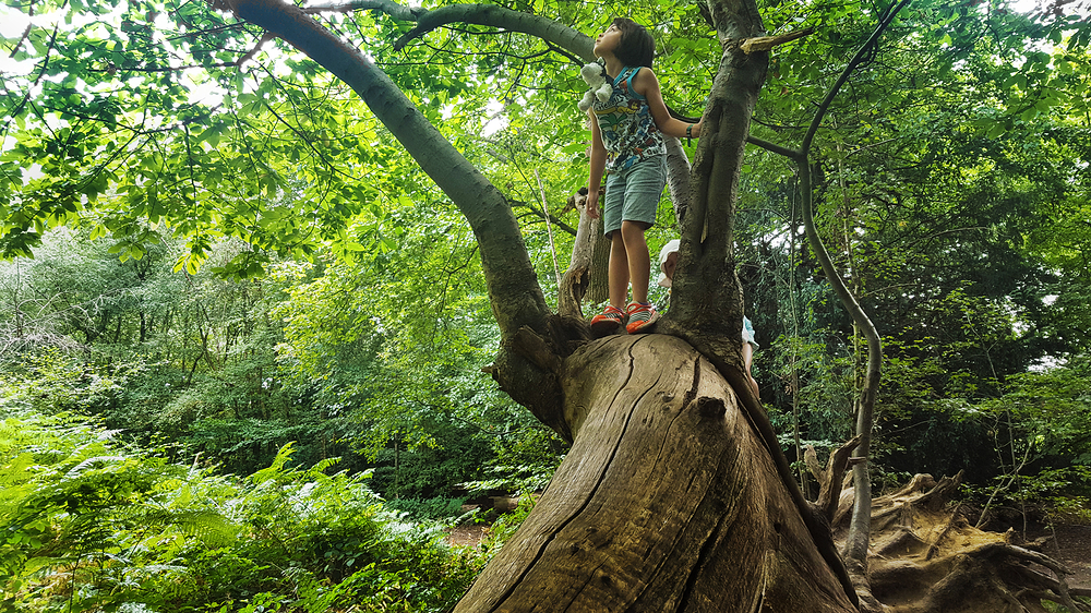 mia england banstead-woods park