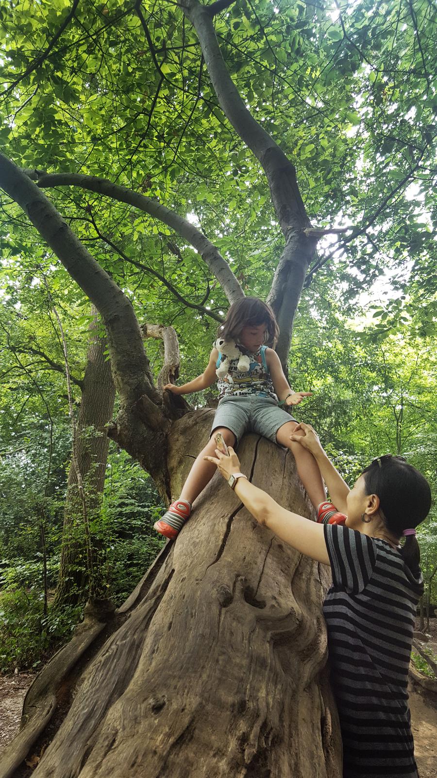 mia mayumi england banstead-woods park